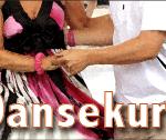 dansekurs2013